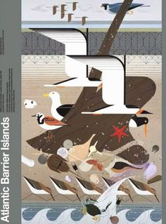Atlantic Barrier Islands poster by modernist Charley Harper. Sold by the Cincinnati Museum of Art. Charley Harper, National Park Posters, National Parks, Animal Graphic, Parc National, Illustrations, Bird Illustration, Bird Art, Artist Art