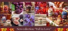 copertina-fall-in-love-2017-01-1200x500