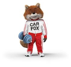 22 Best The Car Fox Images In 2012 Fox Foxes Red Fox