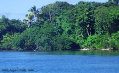 Discover Belize!