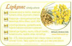 Info obrazok lipkavec Korn, Organic Beauty, Victoria, Plants, Thyroid, Fitness, Thyroid Gland, Plant, Planets