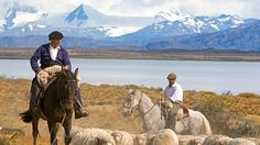Exploring Patagonia in the footsteps of Bruce Chatwin Gauchos herd sheep near Lake Argentino. Picture: Alamy
