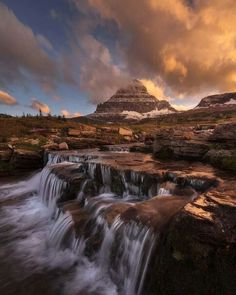 Photo by Naturescape Photography