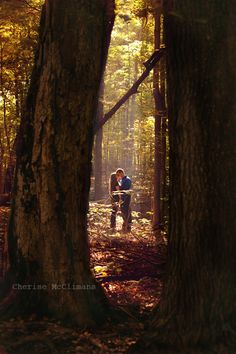 Engagement photography in the woods