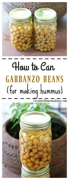 Canning garbanzo beans. How to can garbanzo beans (chick peas) to make homemade hummus. Step by step pressure canning for beginners.