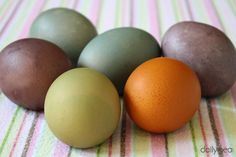 Natural Earth Paint Wooden Eggs Craft Kit Review & Giveaway @ DailyPea.com