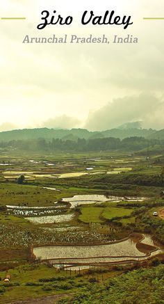 Acclaimed as the world heritage site for its natural beauty Ziro is a amazing valley located in Eastern Arunachal Pradesh, India
