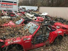 "8,796 Likes, 354 Comments - TopMiata.com (@topmiata) on Instagram: "" Would you save them? R.I.P Miatas at #skipbarberracingschool #TopMiata @skipbarberracing #miata…"""
