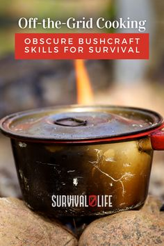 Off-the-grid cooking and other bushcraft skills to survive in the wilderness. #offgrid #offthegridcooking #bushcraftskills #bushcraft #survivalskills #survival #survivallife Survival Life, Camping Survival, Outdoor Survival, Survival Skills, Bushcraft Skills, Emergency Preparation, Off The Grid, Lifehacks, Wilderness