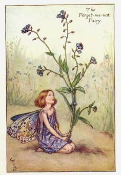 Cicely Mary Barker The Forget Me Not Fairy
