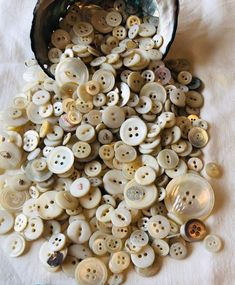 Vintage Mother of Pearl tasse, Révolu Button,MOP,Vintage Sewing Notion. Vintage Sewing Notions, Vintage Sewing Machines, Sewing Spaces, Sewing Rooms, Button Cards, Button Button, Wool Quilts, Crochet Food, Sewing Baskets