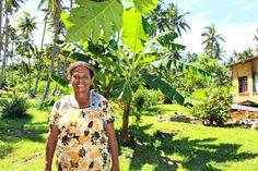 Work and Play in the Happy Isles - Fiji. #fiji #pacific #aid #development #taveuni #pocketsofpeace