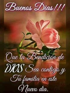 Buenos días Spanish Prayers, Morning Quotes, Morning Greetings Quotes, Morning Messages, Night Quotes, Happy Wishes, Good Day, Good Morning, Good Night