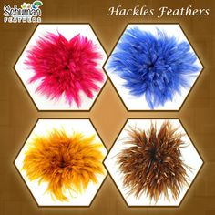 Hackle feathers are the best ways to make almost anything or everything. Visit for buying dyed as well as natural in bulk. Buy Here: goo. Ostrich Feathers, Carnival Costumes, Buying Wholesale, Rooster, Centerpieces, Natural, Frame, How To Make, Stuff To Buy