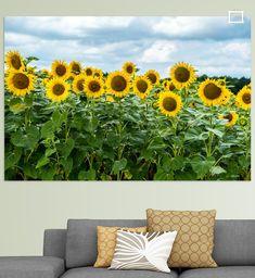 De zonnebloemvelden in Frankrijk zien er fantastisch uit in het donkere weer. De zonnebloemen richten zich naar de zon. Canvas, Prints, Flowers, Art, Tela, Art Background, Florals, Kunst, Canvases