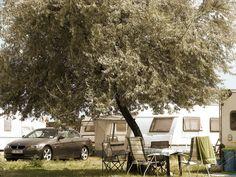 #BMW #Bemmer #Summer #camping