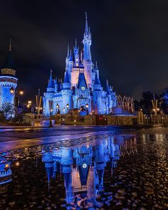 """579 Likes, 4 Comments - Matt Stemerman (@imaginography71) on Instagram: """"Castle Reflections #CinderellaCastle #MagicKingdom #sonyimages #sonyalpha #alphacollective #WDW…"""""""