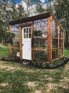 Backyard Greenhouse, Backyard Landscaping, Diy Greenhouse Plans, Pallet Greenhouse, Greenhouse Plants, Old Window Greenhouse, Lean To Greenhouse Kits, Greenhouse Shed Combo, Greenhouse Attached To House
