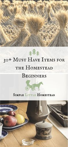 30+ Must Have Items for Homestead Beginners