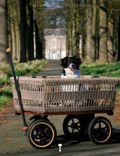 Buy online Wagon with basket By tradewinds, garden trolley
