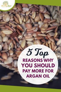 5 Top Reasons Why you Should Pay More for Argan Oil! Argan oil benefits, argan oil hair, argan oil face, argan oil benefits for hair, argan oil hair mask, argan oil hair color, argan oil uses, best argan oil, argan oil benefits for skin, argan oil face benefits, organic argan oil, argan oil face acne, how to use argan oil, argan oil lip gloss, argan oil recipes. #arganoilbenefits #arganoilhair #arganoilface #arganoiluses #arganoilforskin Argan Oil Lips, Argan Oil Hair Mask, Face Care Tips, Face Care Routine, Argan Oil Skin Benefits, Beauty Tips For Hair, Beauty Hacks, Homemade Body Care, Natural Hair Care