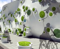 great idea, wall planters on wall