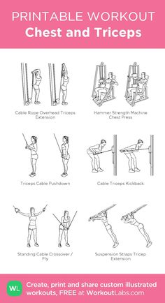Chest and Triceps visual workout Triceps Workout, Tricep Workout Women, Tri Workout, Chest Workout Women, Gym Workout Plan For Women, Cycling Workout, Shoulder Workout Women, Chest And Shoulder Workout, Bowflex Workout