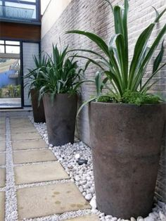 Today, I will reveal to you some cool and charming garden features that will tur. - Today, I will reveal to you some cool and charming garden features that will turn your garden into y - Side Garden, Garden Pots, Garden Hedges, Planter Garden, Planter Pots, Landscape Design, Garden Design, Front Yard Design, Low Maintenance Landscaping