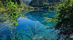 One of the lakes in Juizhaigou (Jiuzhai Valley Natural Park), China.