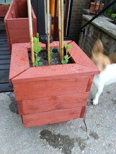 #Garden, #PalletPlanter, #RecycledPallet