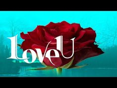 Say 'I Love You' through these powerful words --> #love #care #special