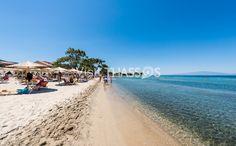 Skala Rachoni beach Thassos island Thasos, Greece Islands, Crystal Clear Water, Mediterranean Sea, Macedonia, Where The Heart Is, Holiday Destinations, Beaches, September