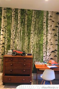 Watch this birch wallpaper on CHCH TV and see it on real customer's walls. The removable wallpaper is an easy DIY project that quickly transforms a room. Birch Tree Mural, Birch Tree Wallpaper, Easy Diy Projects, Kids Bedroom, Room Inspiration, Green, Prints, Blog, Home Decor