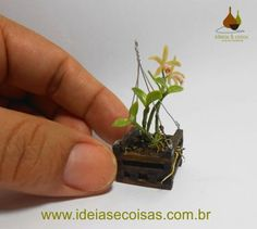 Miniature Cattleya orchid forbesii - handmade modeling clay cold porcelain. 1:12 scale