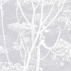 Cole & Son  Cow Parsley Wallpaper - 95/9049 ($93) ❤ liked on Polyvore featuring home, home decor, wallpaper, backgrounds, grey, grey wallpaper, pattern wallpaper, gray pattern wallpaper, grey pattern wallpaper and paper wallpaper