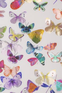 Butterflies Wrapping Paper Luxury Set of 6