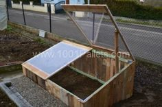 greenhouse 600x399 Pallet greenhouse for 10$ in pallet garden  with Pallets House