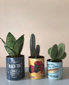Likes, 118 Comments – Kelly van Koppenhagen ( on Instagr… - House Plants Cacti And Succulents, Potted Plants, Garden Plants, Indoor Plants, Plant Pots, Cactus E Suculentas, Deco Nature, Plants Are Friends, Deco Floral