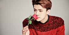 this photo of Oh Sehun is perfection, I can almost smell roses and summer.