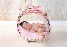 Beautiful newborn baby girl basket photography