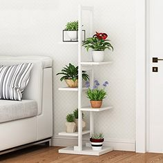 Beautiful House Plants For Decoration.To decorate your home, you must think of Simple and Beautiful House Plants Decor Ideas. Cute Living Room, Table Decor Living Room, Beautiful Living Rooms, Garden Shelves, Plant Shelves, Decoration Plante, Inside Plants, Indoor Flowers, Balcony Flowers