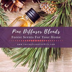 Pine Diffuser Blends - Forest Fresh Essential Oil Scents For Your Home by Loving Essential Oils