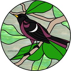 Stained Glass Oriole Pattern ~ painting on glass