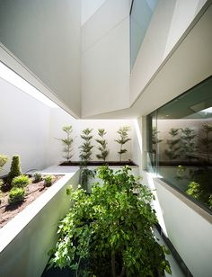 AGi-architects-wall-house-khaldiya-kuwait