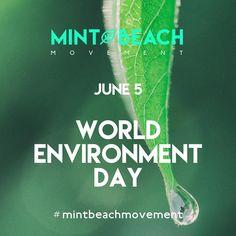 05 de Junho - Dia Mundial do Meio Ambiente --- June 5 - World Environment Day 🌍 #mintbeachmovement #diamundialdomeioambiente #worldenvironmentday #mintbeach #itsnotok #saveouroceans #sustainability #sustentabilidade #environment #microcleanup #take3forthesea #grabbits #justgrabbits #Take2Miss #cleanseas #2minutebeachclean #beachclean #beachcleanup #beachcleanportugal #beach #praia #praialimpa #zerolixo #portugal