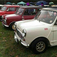 かっこよか #Morrisminicooper#Austinminicooper#mini#minicooper#classicminis #classicminicooper#oldminis... Black Mini Cooper, Classic Mini, Vehicles, Instagram, Car, Vehicle, Tools