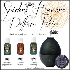 Pests Got You Down? Try Some Terrific Pest Management Tips - Pest & Insect Control Best Pest Control, Pest Control Services, Diffuser Blends, Oil Diffuser, Get Rid Of Spiders, Keep Spiders Away, Bees And Wasps, Pest Management, Neem Oil