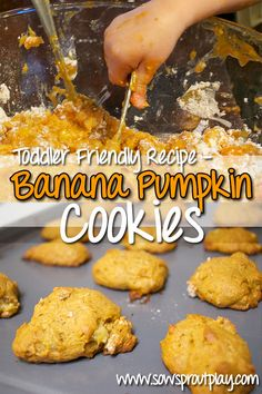 Toddler Friendly Recipe - Banana Pumpkin Cookies