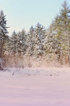 New England Photo Diary