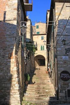 Suvereto, in the province of Livorno, Tuscany region, Italy
